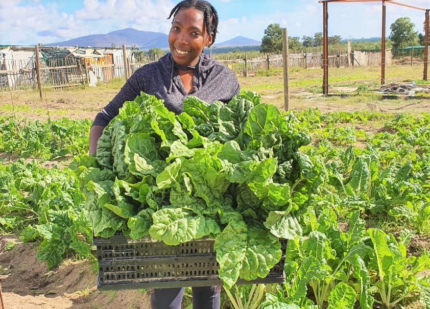 To Sinethemba Botha, her small 2300 square metre garden is a place of peace and tranquility. Photo: Supplied/Food For Mzansi