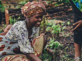 smallholder farmers