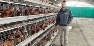 Jose Gonsalves is the winner of the Agri Gauteng and Santam Young Farmer of Year competition.Photo: Supplied/ Food For Mzansi