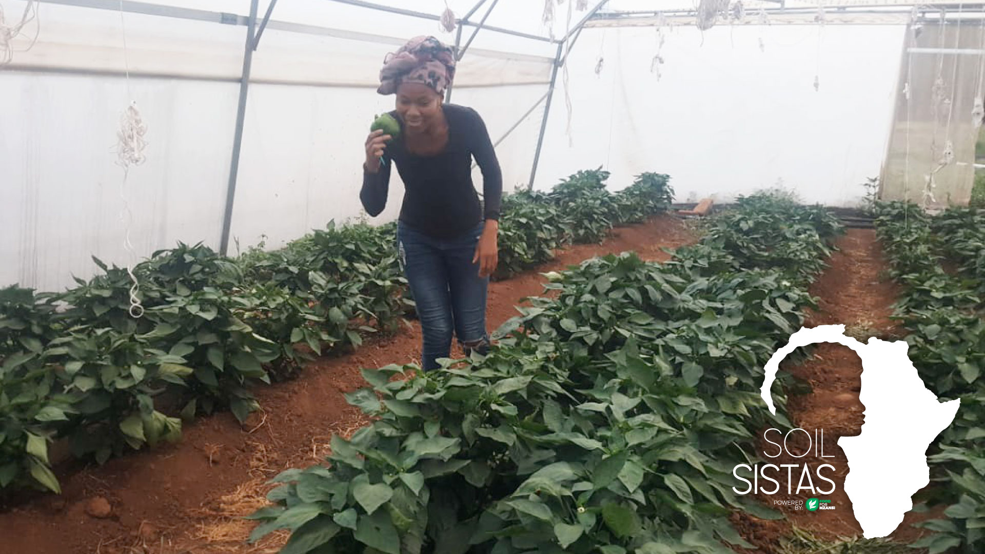 Mapaseka Dlamini no longer wanted to be tied to a desk when she decided to pursue her farming dreams. Photo: Supplied/Food for Mzansi