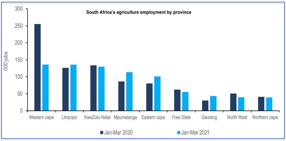 South Africa's agricultural employment by province