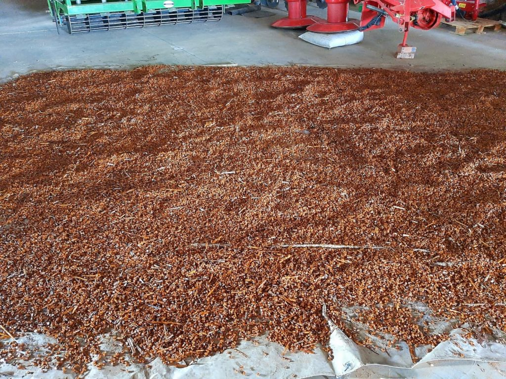 The famed chocolate maize mixture, made using Voermol Kandy Korn. Photo: Supplied/Food for Mzansi.