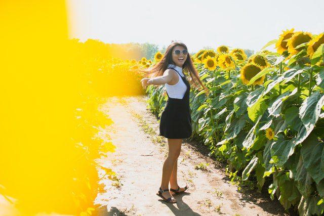 flower farm tourism