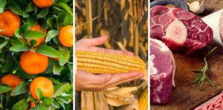 Mzansi's agricultural economy still in good shape.