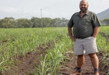 Not all heroes wear capes. In the KwaZulu-Natal town of Mkuze, Dreyer Senekal is known as a farming hero who is transforming the lives of small-scale cotton and sugar cane growers along with his family. Photo: Twitter