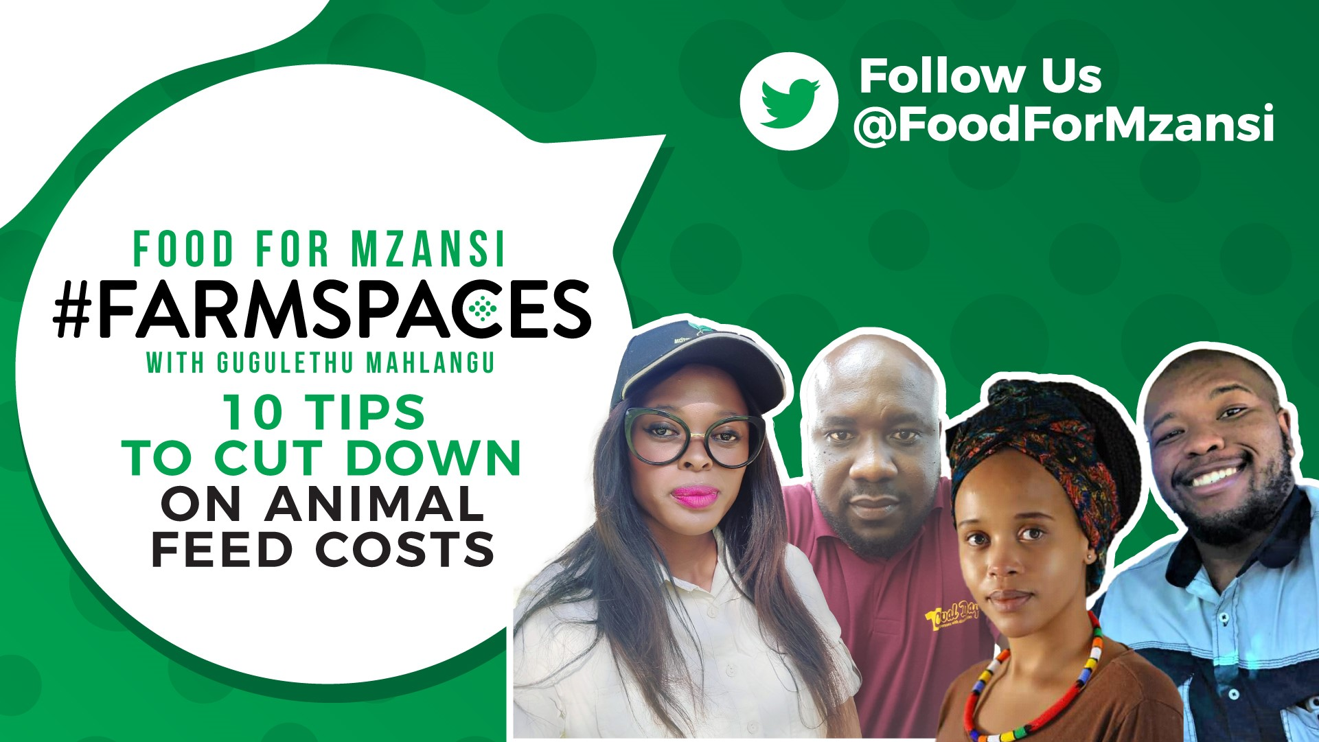 This week on Food for Mzansi #FarmSpaces, we explore how to cut costs on animal feed. Photo: Supplied/Food for Mzansi.