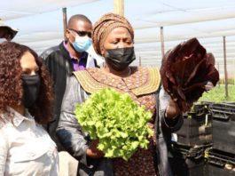 Women farmers get congratulated by MEC
