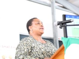 Agriculture minister Thoko Didiza speaking at the engagement with farm workers at Cederberg, Municipality, Western Cape. Photo: Supplied/DALRRD