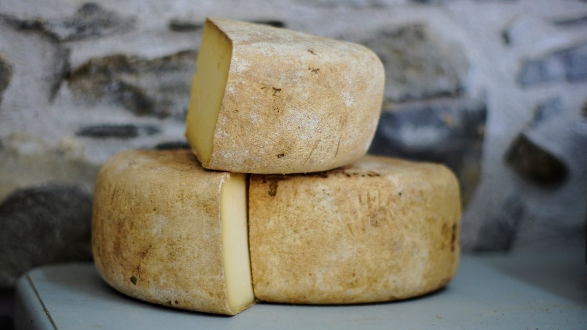 There is great potential for the artisanal cheesemaking industry amoungst South Africa's small-scale farmers, says Dr Faith Nyamakwere. Photo: Alexander Maasch/Unsplash