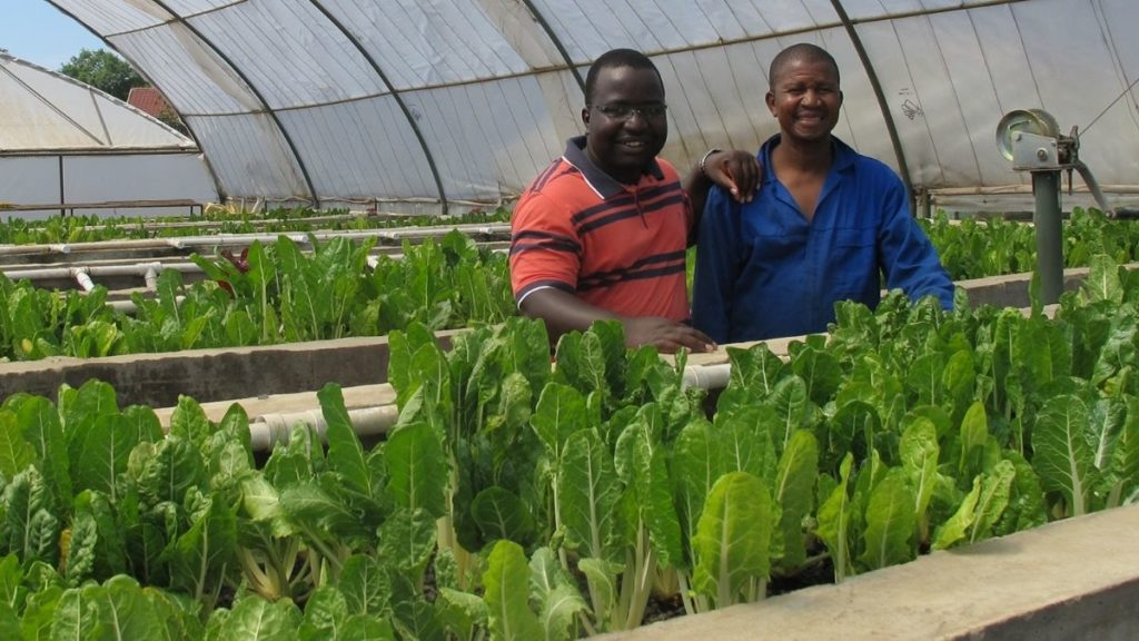 """""""Aquaponics farming has huge potential to remove barriers to entry into the agricultural sector,"""" says Navisha Bechan-Sewkuran, Mondelēz corporate and government affairs lead for Sub-Saharan Africa. Photo: Supplied/Food For Mzansi"""