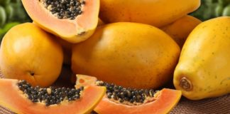 Very few farmers are brave enough to choose papayas as an agricultural crop. With lower demand, the country is also producing considerably lower volumes of the fruit than a few years ago. Photo: Supplied/Food For Mzansi