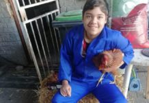 """Mzansi, meet your latest """"urban farmer"""". His name is Cole Oncke. At 14, he is already farming with chickens and vegetables at his parents' place in Kuils River in the Western Cape. Photo: Supplied/Food For Mzansi"""